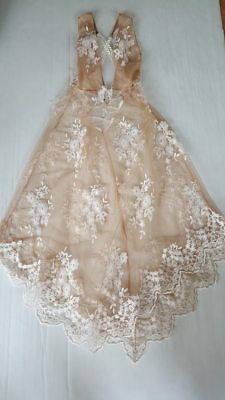 Victoria's Secret Embroidery Sheer Nude Night Gown Small, Medium, Large
