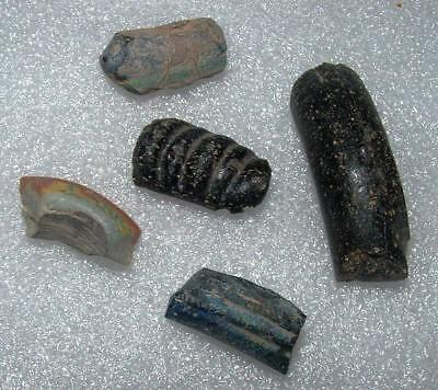 lot of 5 ancient roman glass bracelets fragments .very nice.