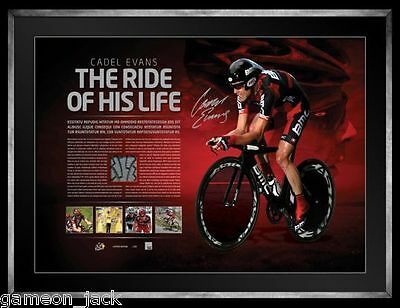 Cadel Evans 'The Ride Of His Life' (swatch of race worn knicks)