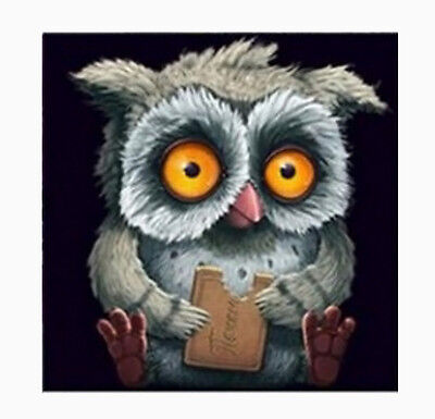 Owl DIY 5D Embroidery Diamant Sticker Cross Stitch Painting Home Kunst