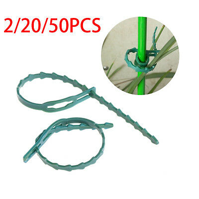 2-50Pc Adjustable Garden Plastic Plant Cable Tied Tree Climbing Support Supplies