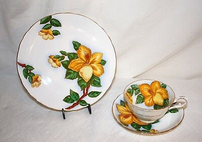 Vintage TUSCAN  Yellow Hibiscus Tea Cup Trio Set