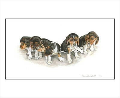 "Beagle ""Mamas First Litter"".Original 8.5x11 Art Print."