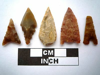 5 x High Quality Neolithic Arrowheads - 5 Different Styles - 4000BC - (K100)