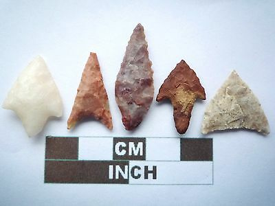 Neolithic Arrowheads x5, High Quality Selection of Styles - 4000BC - (X023)