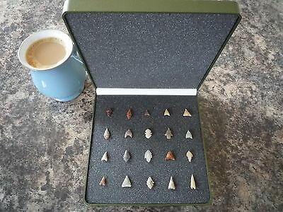 Miniature Neolithic Arrowheads x 20 in Display Case - 4000BC - (Q128)