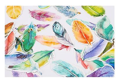 Lot of 30 pcs rainbow feather Art Painting Post cards