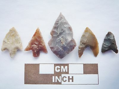 5 x High Quality Neolithic Arrowheads - 4000BC - (K012)
