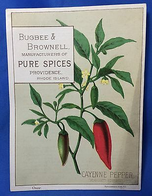 c 1900 Antique Bugbee Brown SPICES Advertisng Victorian Trade Card Providence RI