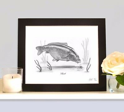 BAZIL Legendary Carp Fishing Drawing MOUNTED Print Picture Classic Collectable