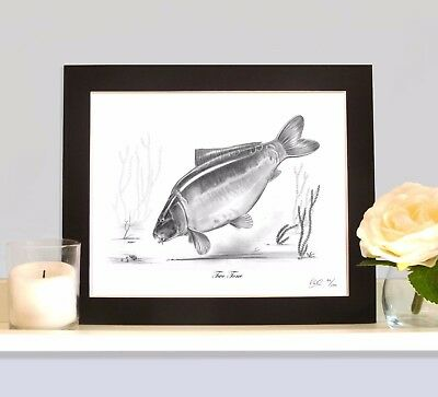 TWO TONE Carp Fishing Drawing MOUNTED Print Picture Classic Rare Collectable