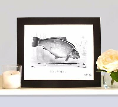 HEATHER THE LEATHER Carp Fishing Drawing MOUNTED Print Picture Rare Classic