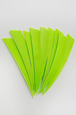 12 Real Turkey Feather Fletching 3in Shield