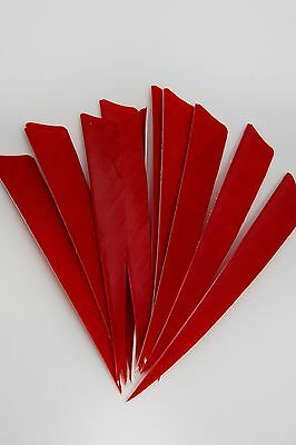 12 Real Turkey Feather Fletching 4in Shield