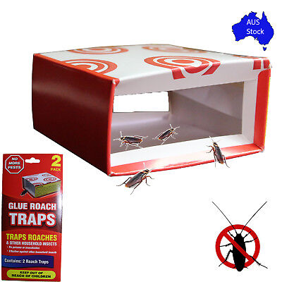 2/4/6/8 Cockroach Glue Traps Sticky Insect Catcher Insecticides Cockroaches