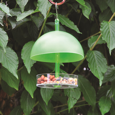 Small Bird Dome Feeder Garden Wild Birds Seeds Nuts Mealworm Feeding Station Uk