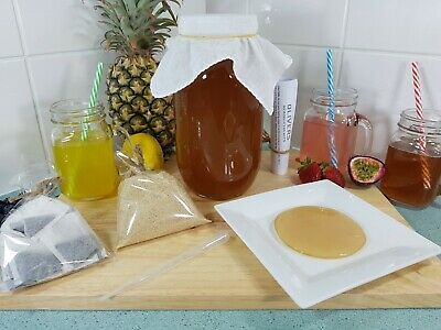 2lt Kombucha Brew Kit, Organic Scoby, 200ml Strong Starter Tea and Instructions