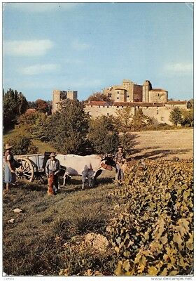 32-Vendanges A Larressingle-N°204-D/0413