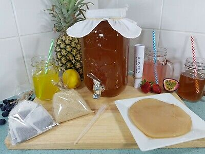 3.5lt Begginers Kombucha Brew Kit, Easy Instructions, Scoby,Continuous Brew Jar