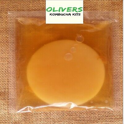 Overstocked Kombucha Scoby 100ml Starter Tea & Instructions Free Delivery !!
