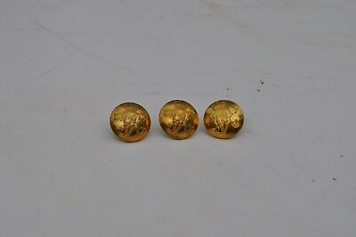 V.R.Tunic buttons