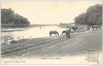 40-Rives De L Adour-N°213-A/0217