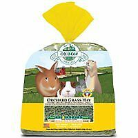 Oxbow Animal Health Orchard Grass Hay for Pets, 50-Pound