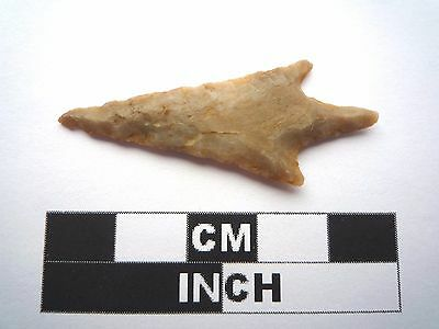 Neolithic Arrowhead 45mm, High Quality Saharan Flint Artifact - 4000BC  (1008)