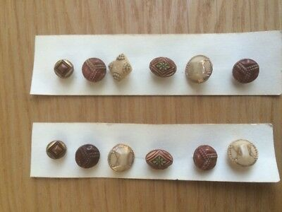 12 Ornate Vintage Vegetable Ivory Buttons NOS, Various Shapes