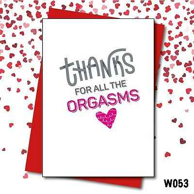 Valentine's Day Card/Vday/All the Orgasms/Thanks/Orgasms/Funny/Love Layla/ W053