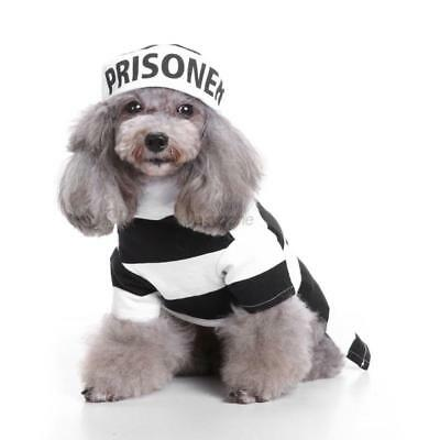 Cute Puppy Pet Dog Cat Prisoner Cosplay Hallowee Costume Dress + Hat Clothes Set