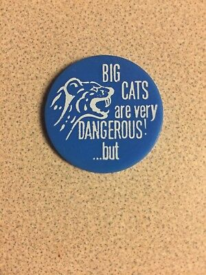 Big Cats Are Very Dangerous But A Little Pussy Won't Hurt Anyone