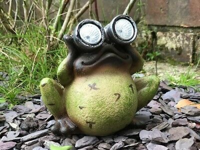 SOLAR Frog with solar powered light up binoculars quirky resin garden ornament