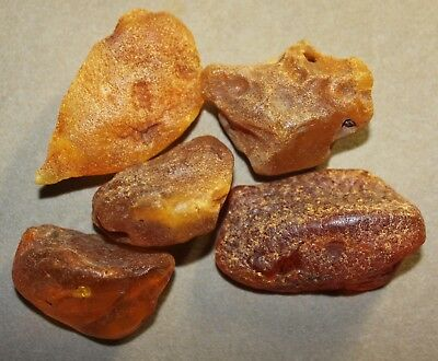 AMBER / raw baltic stones bernstein natural bursztyn baltycki genuine 琥珀