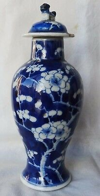 Antique Chinese Porcelain Baluster Vase Prunus Kangxi Marks