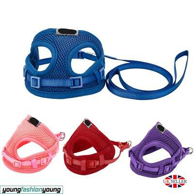 XXS Tiny Dog Harness Lead Set Teacup Mini Puppy Chihuahua Rabbit Cat Toy UK