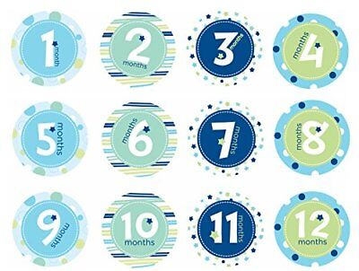 Pearhead First Year Monthly Milestone Photo Sharing Baby Belly Stickers 1-12 ...