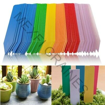 200 Labels to plug PVC Garden Flower Plant Seeds Plastic Felt 20cm