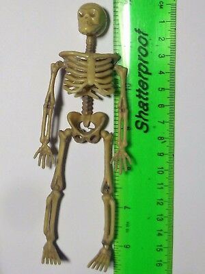 """1:12 Scale Plastic Skeletons 6"""" inch Small Halloween Decoration"""