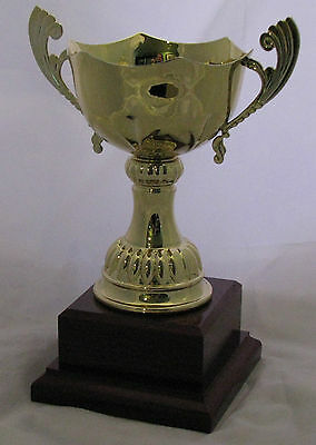Gold Trophy Cup with Handles 200mm Engraved FREE