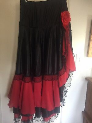 Handmade Latin Dance Skirt
