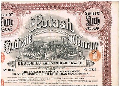 Potash Syndicate of Germany, 1929, 100 LB, seltene 100LB in BRAUN !