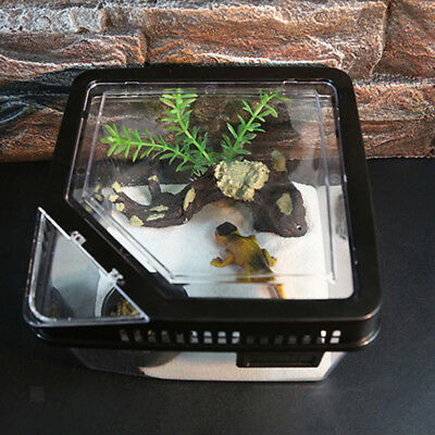 Pet Reptile Insect Breeding Raising Box for Turtle Lizard Spider Beetle Blk