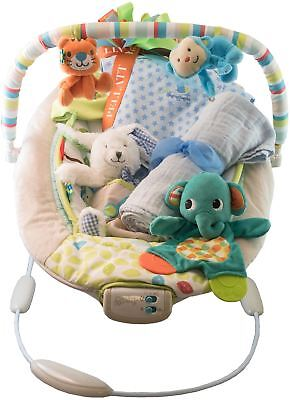 New Baby Boy Gift Set with Bouncer, Undershirt, Swaddle, Teddy, Hat and Blanket