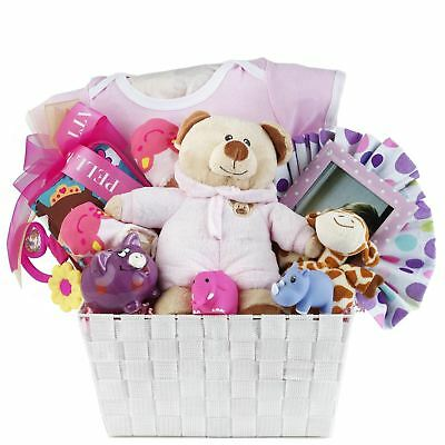 Baby Girl Gift Basket with Romper, Plush, Toys, Toy Block & Picture Frame