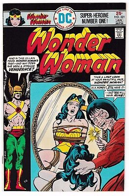 WONDER WOMAN #221 (FN/VF) Cover Story Appearance of DOCTOR CYBER! DC Hawkman!