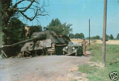 COLOR WWII  Photo German Jagdtiger Tiger II Pzkpfw. WW2 World War Two Panzer