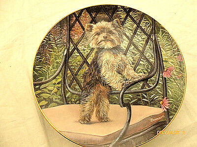 The Danbury Mint Yorkie Pals Garden Seat Collector Plate Limited Edition
