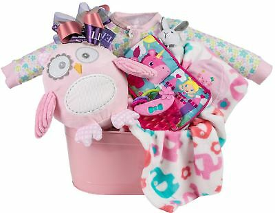 Baby Girl Gift Basket with Blanket, Plush Owl, Sleeper, Hat and Toys