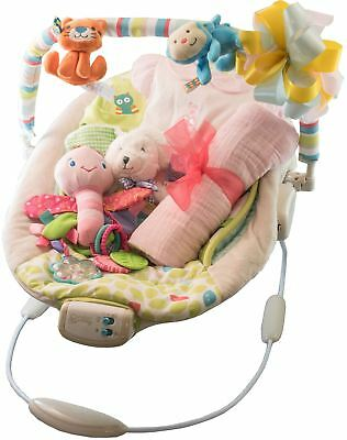 New Baby Girl Gift Set with Bouncer, Undershirt, Swaddle, Teddy, Hat and Blanket